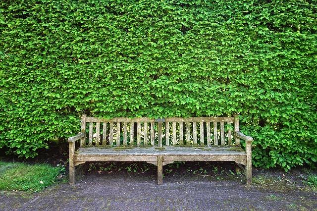 worn outdoor bench